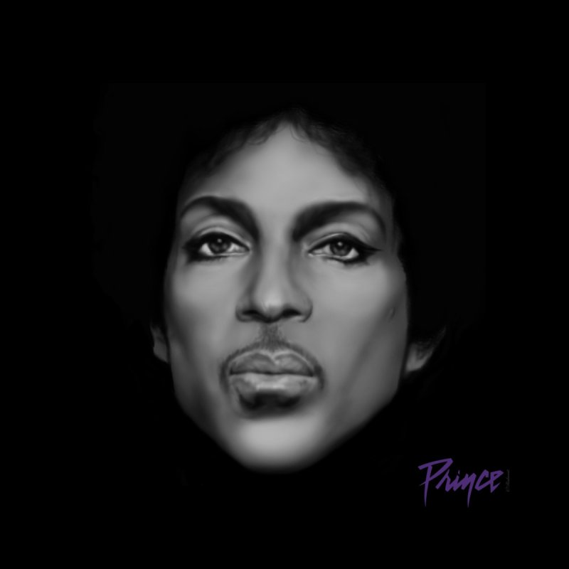 PRINCE IN BLACK Home Stretched Canvas by christopheart