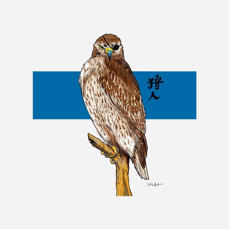 The Falcon Hunter Women's T-Shirt by Pigment World Artist Shop