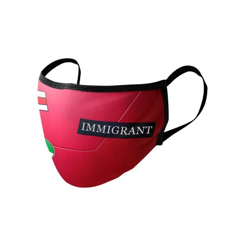image for The Bike (IMMIGRANT)