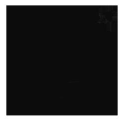 robsonborges Logo