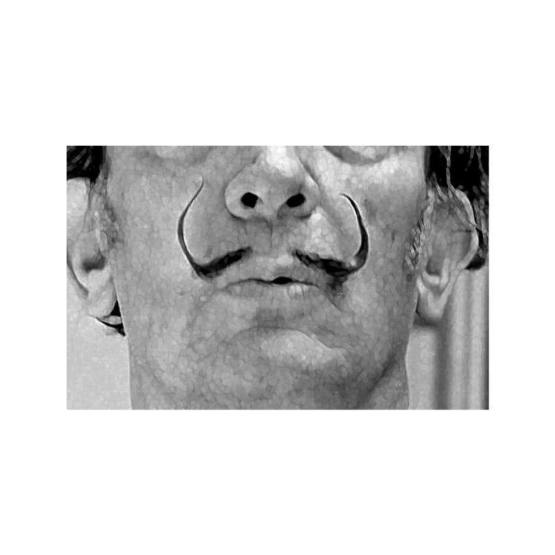 DALI STACHE Accessories Face Mask by Rocks Off Threads