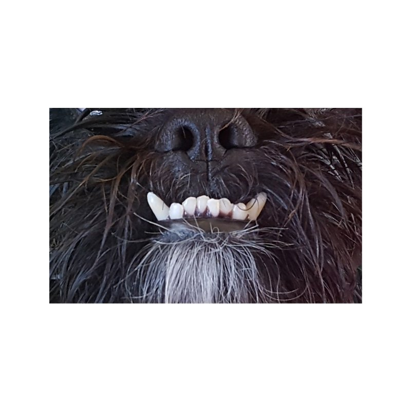 CHEWY CHARLIE Accessories Face Mask by Rocks Off Threads