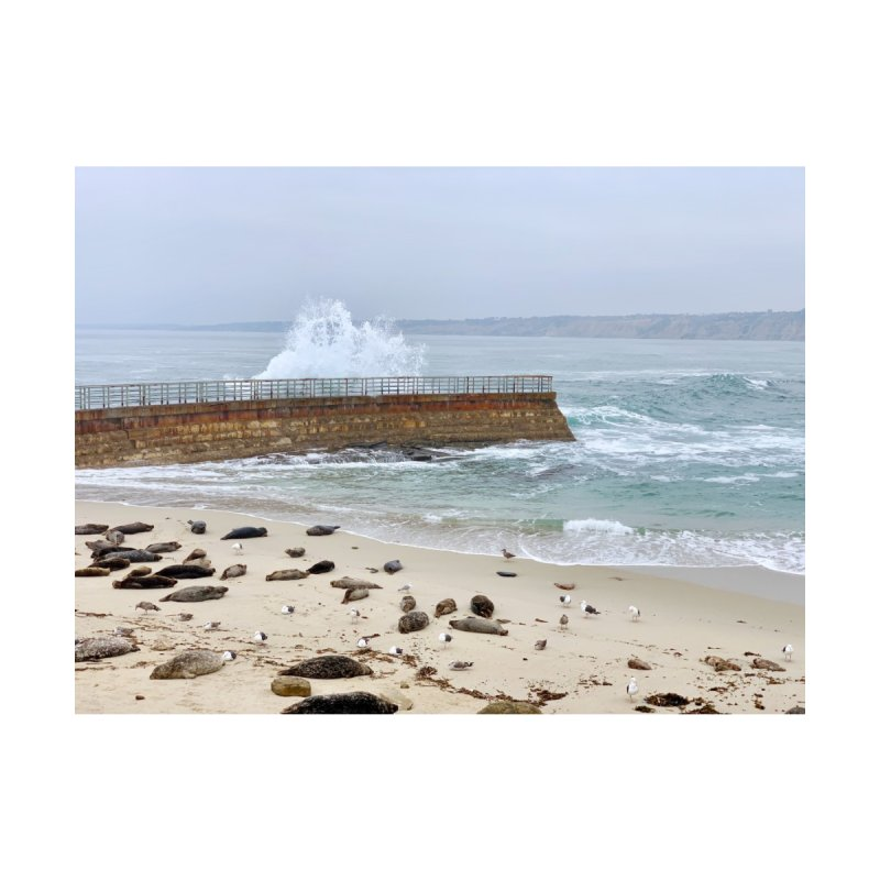 La Jolla Art Prints Duvet by rubberdanpants