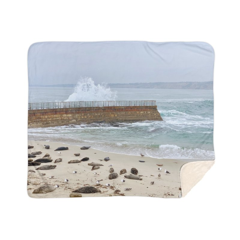 La Jolla Art Prints Blanket by rubberdanpants