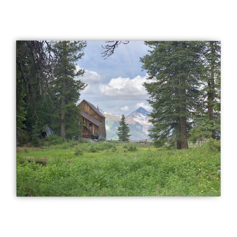 Alta Home Stretched Canvas by rubberdanpants