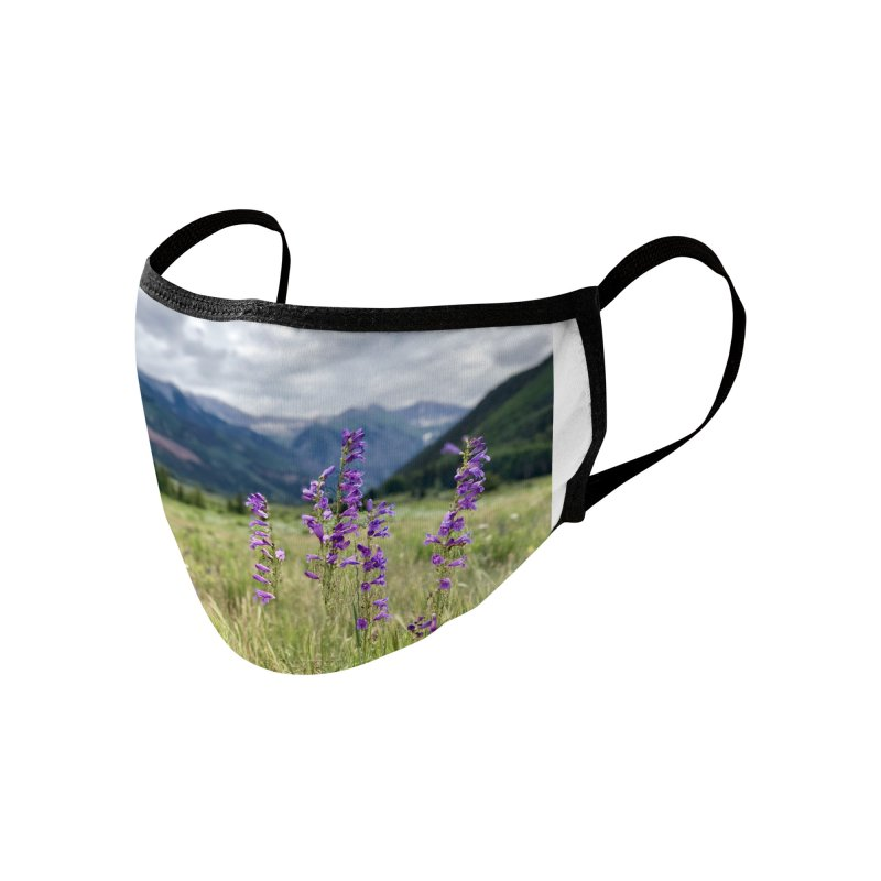 Grand Mesa Accessories Face Mask by rubberdanpants