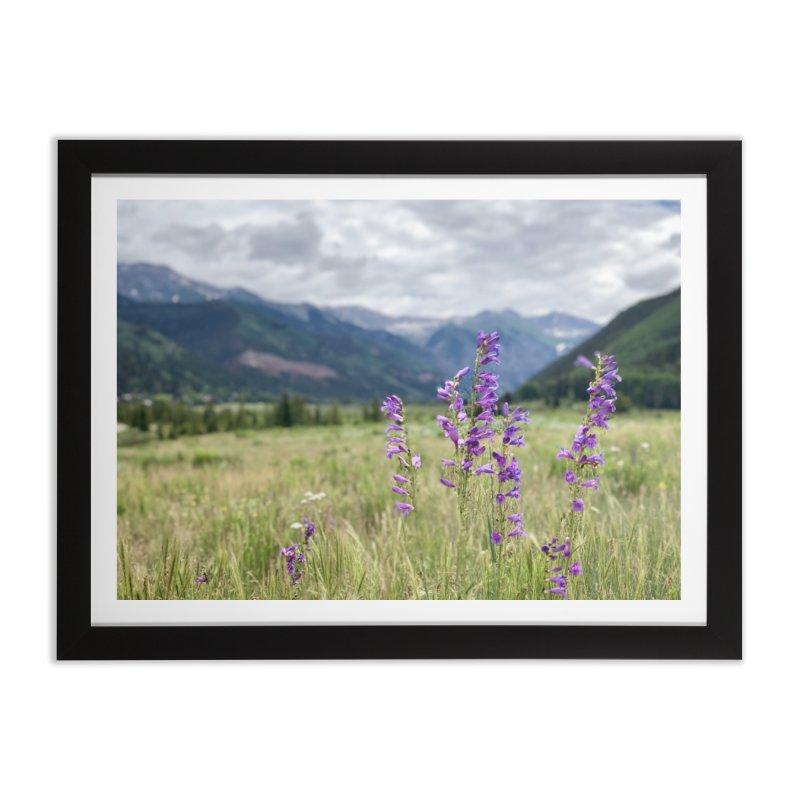 Grand Mesa Art Prints Framed Fine Art Print by rubberdanpants