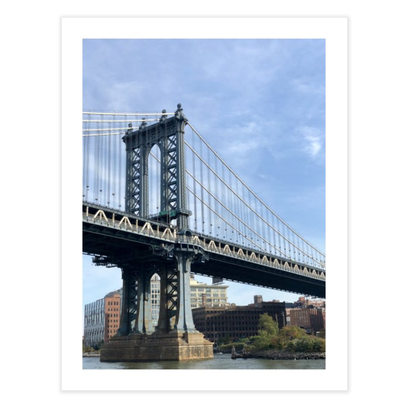Brooklyn Home Fine Art Print by rubberdanpants