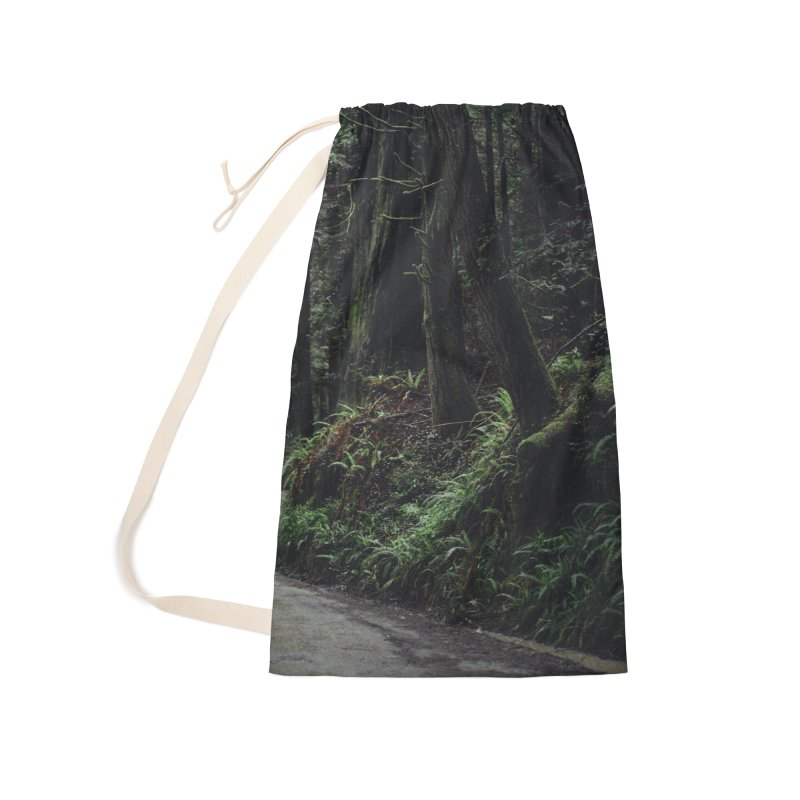 Redwoods Accessories Laundry Bag Bag by rubberdanpants