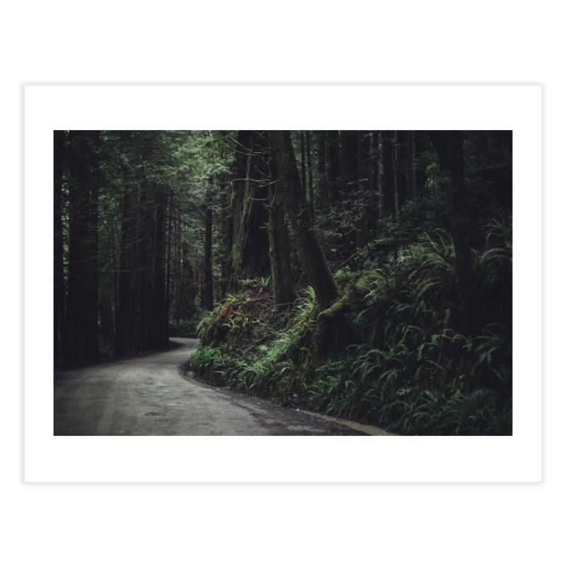 Redwoods Art Prints Fine Art Print by rubberdanpants