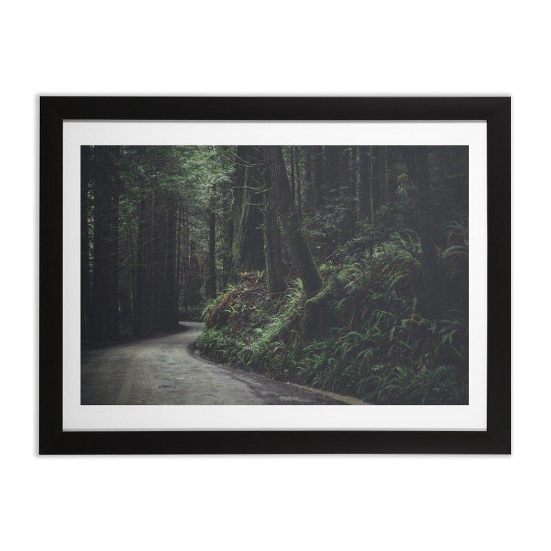 Redwoods Art Prints Framed Fine Art Print by rubberdanpants