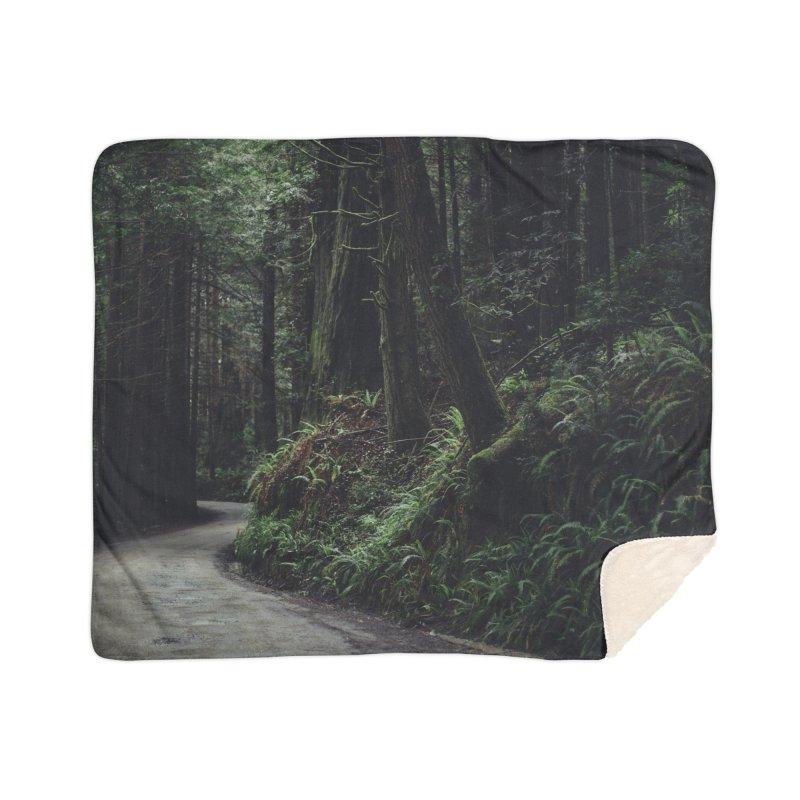 Redwoods Art Prints Blanket by rubberdanpants