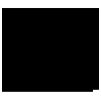 Ruckus + Riddles Logo