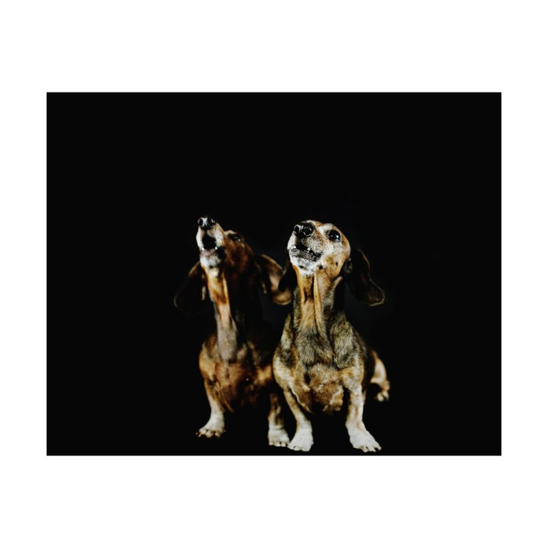 Howling Hounds by rufusontheweb's Artist Shop