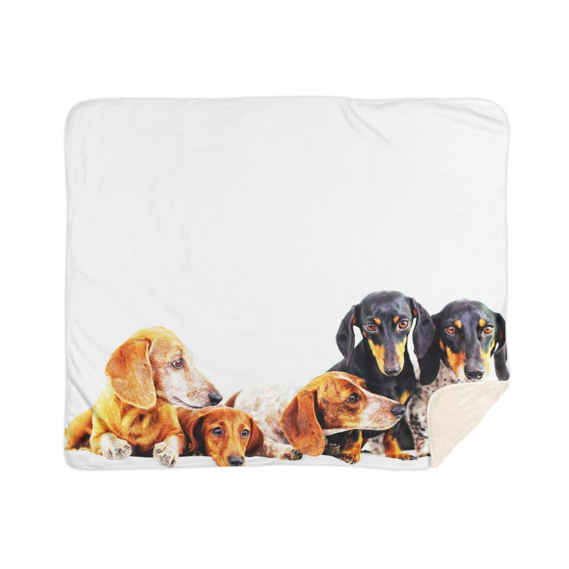 5 dachshunds Home Sherpa Blanket Blanket by rufusontheweb's Artist Shop