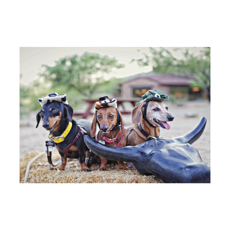 Dachshund cowboys by rufusontheweb's Artist Shop