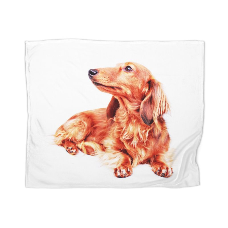 Longhair dachshund Home Blanket by rufusontheweb's Artist Shop