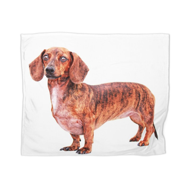 Brindle beauty Home Blanket by rufusontheweb's Artist Shop
