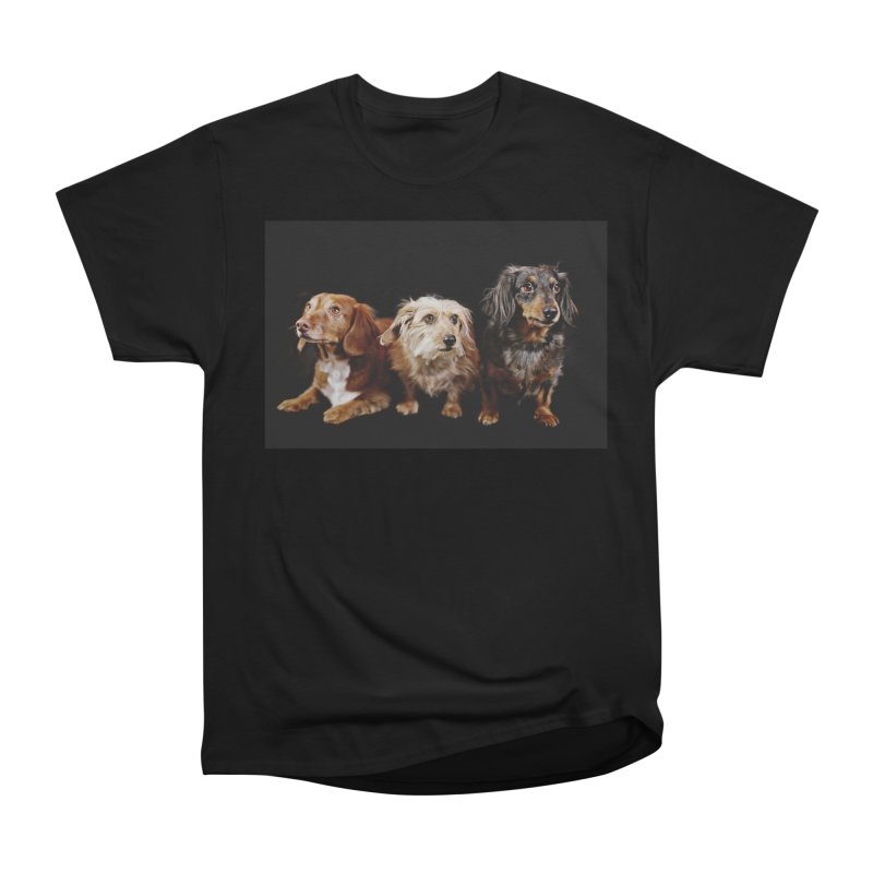 Longhair dachshunds Women's Heavyweight Unisex T-Shirt by rufusontheweb's Artist Shop