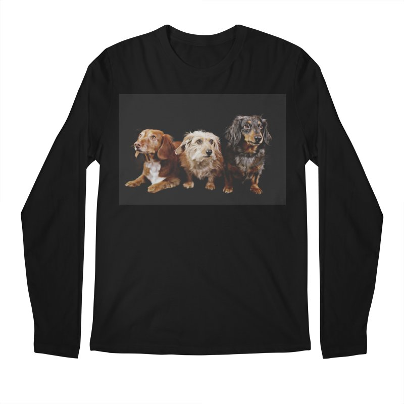 Longhair dachshunds Men's Regular Longsleeve T-Shirt by rufusontheweb's Artist Shop