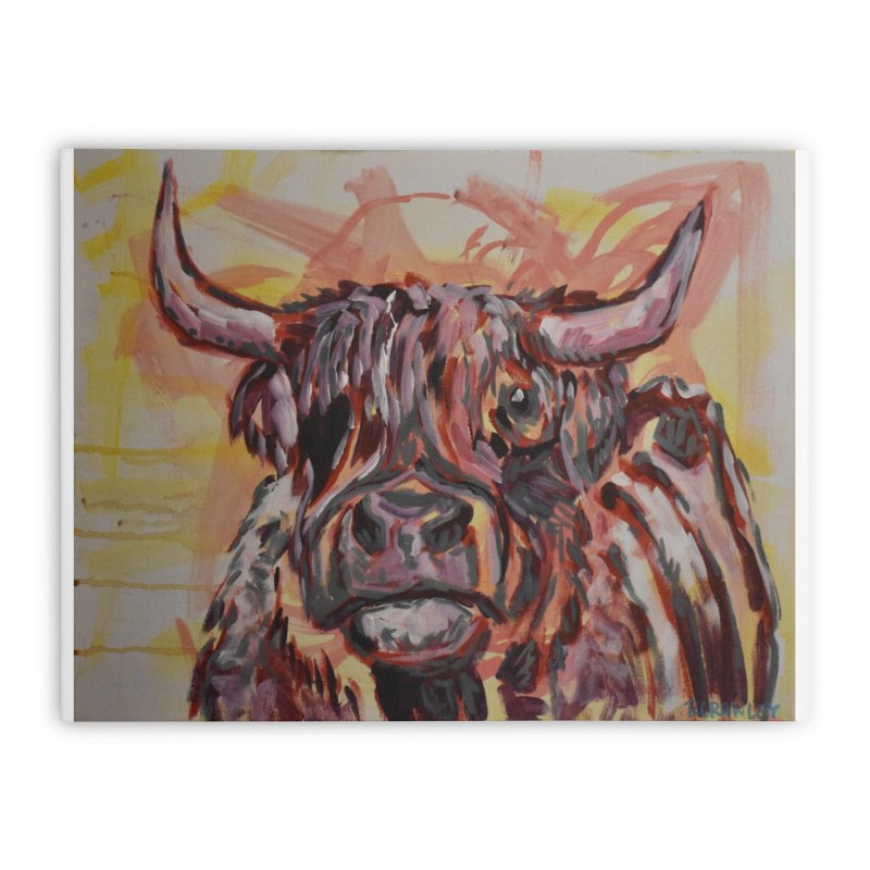 Highlander Cow I Home Stretched Canvas by Rcrawley Art - Shop