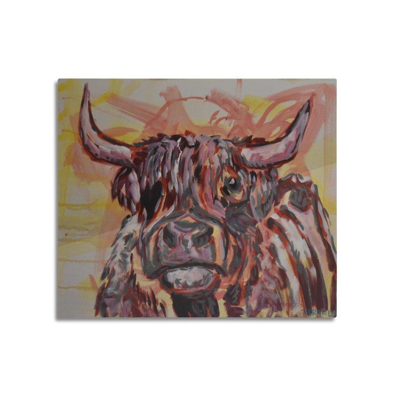 Highlander Cow I Home Mounted Aluminum Print by Rcrawley Art - Shop