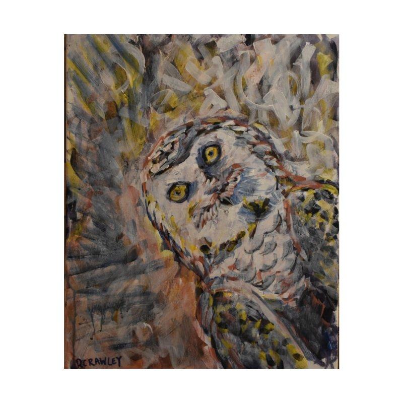 Owl II by Rcrawley Art - Shop