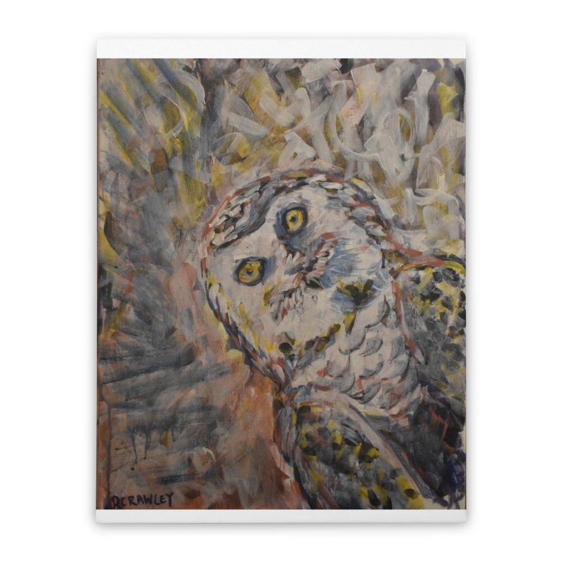Owl II Home Stretched Canvas by Rcrawley Art - Shop