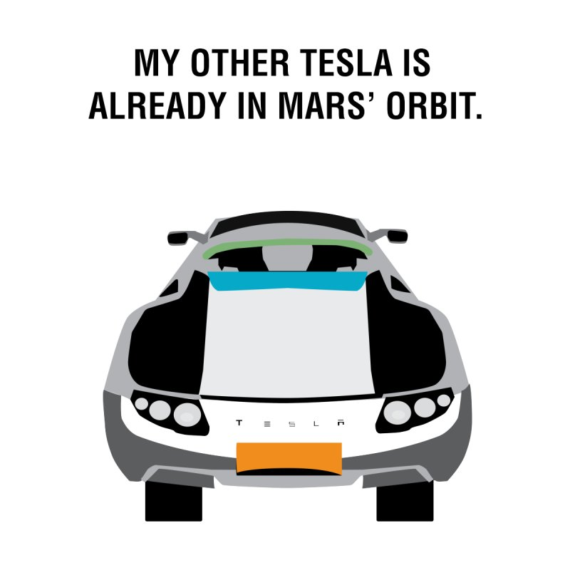 My Other Tesla is Already In Mars' Orbit Accessories Beach Towel by saberdog's Artist Shop