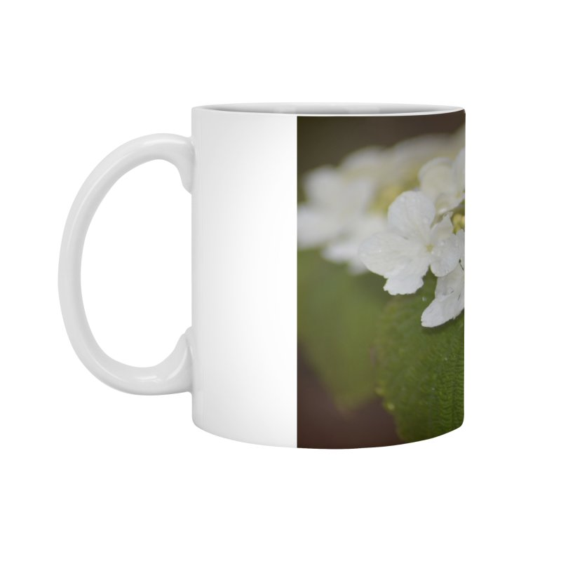 Hobble Bush Blossoms Accessories Mug by sacredtreetraditions's Artist Shop