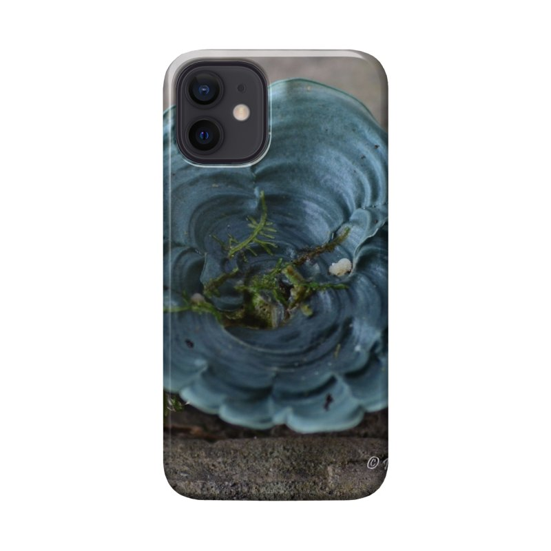 Lichen Accessories Phone Case by sacredtreetraditions's Artist Shop