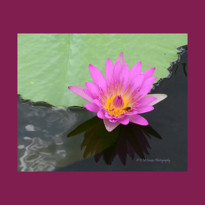 Water Lily Accessories Mug by sacredtreetraditions's Artist Shop