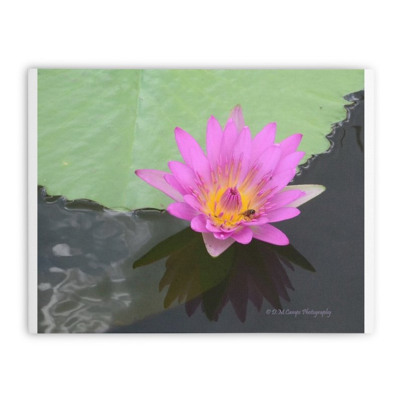 Water Lily Home Stretched Canvas by sacredtreetraditions's Artist Shop