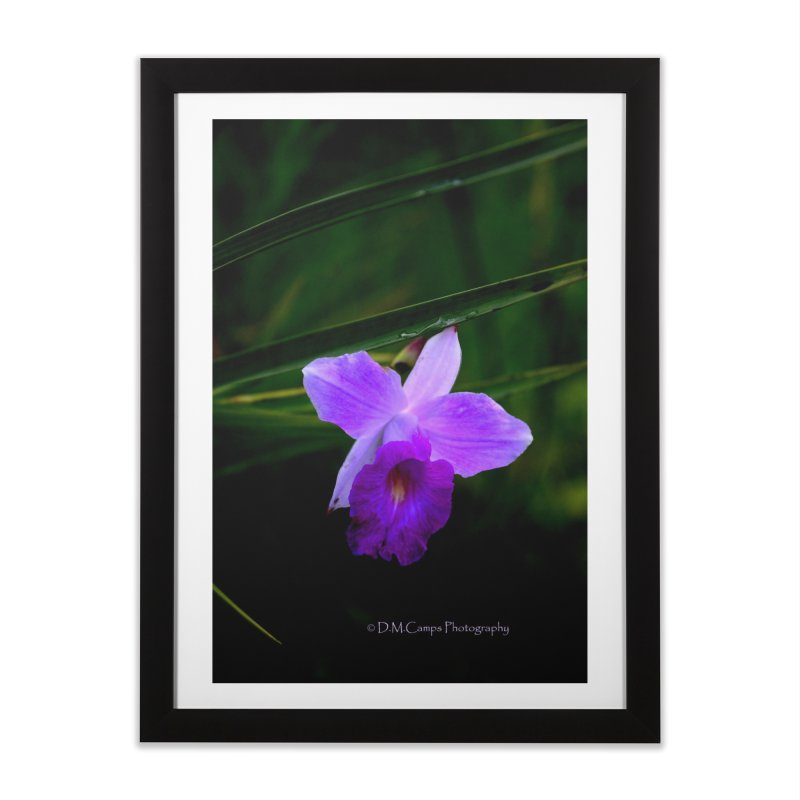 Orchid Home Framed Fine Art Print by sacredtreetraditions's Artist Shop