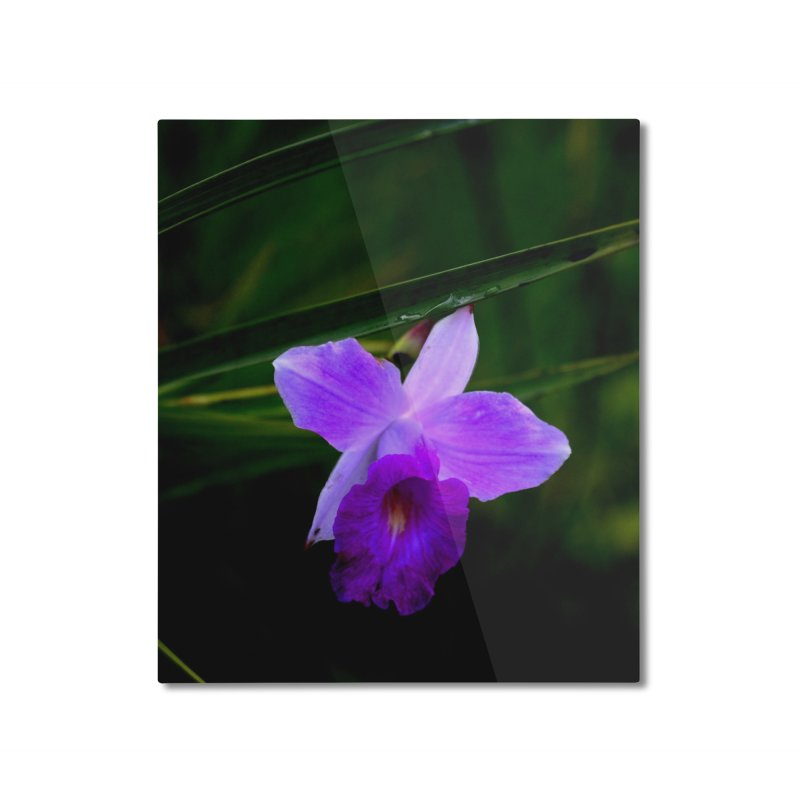 Orchid Home Mounted Aluminum Print by sacredtreetraditions's Artist Shop