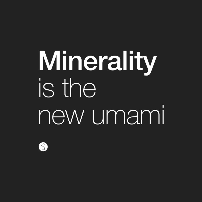 Minerality Is The New Umami Men's T-Shirt by Salty Shirts