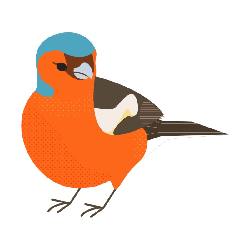 Chaffinch by Sam Osborne Store