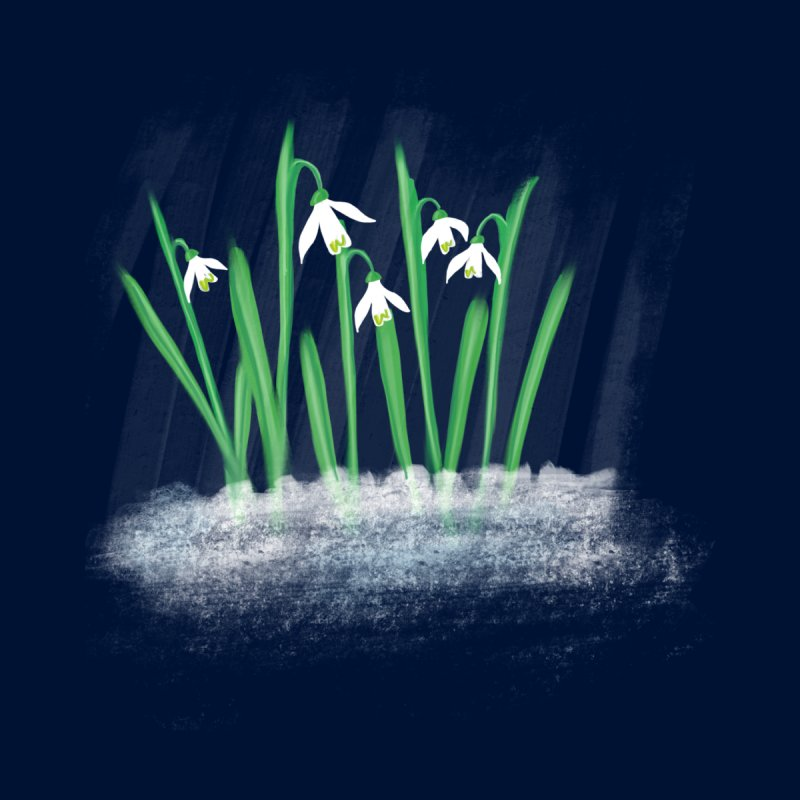 Snow drops None  by Sam Osborne Store