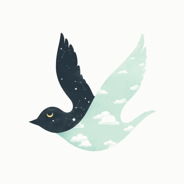 image for Bipolar Bird
