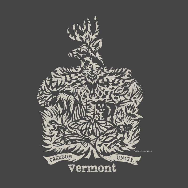 Vermont State Flag Kids T-Shirt by Sarah K Waite Illustration