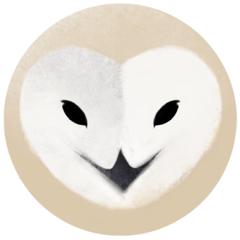 Sash-kash Artist Shop Logo