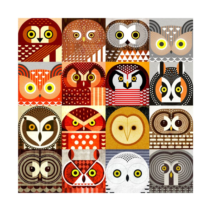 North American Owls None  by scottpartridge's Artist Shop