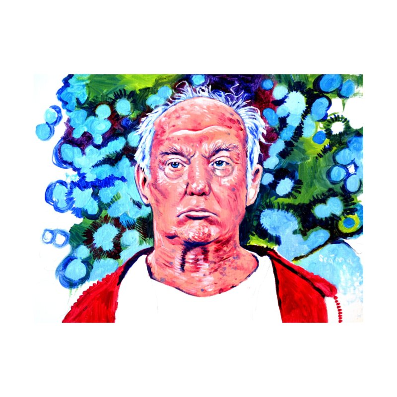 old man trump by paintings by Seamus Wray