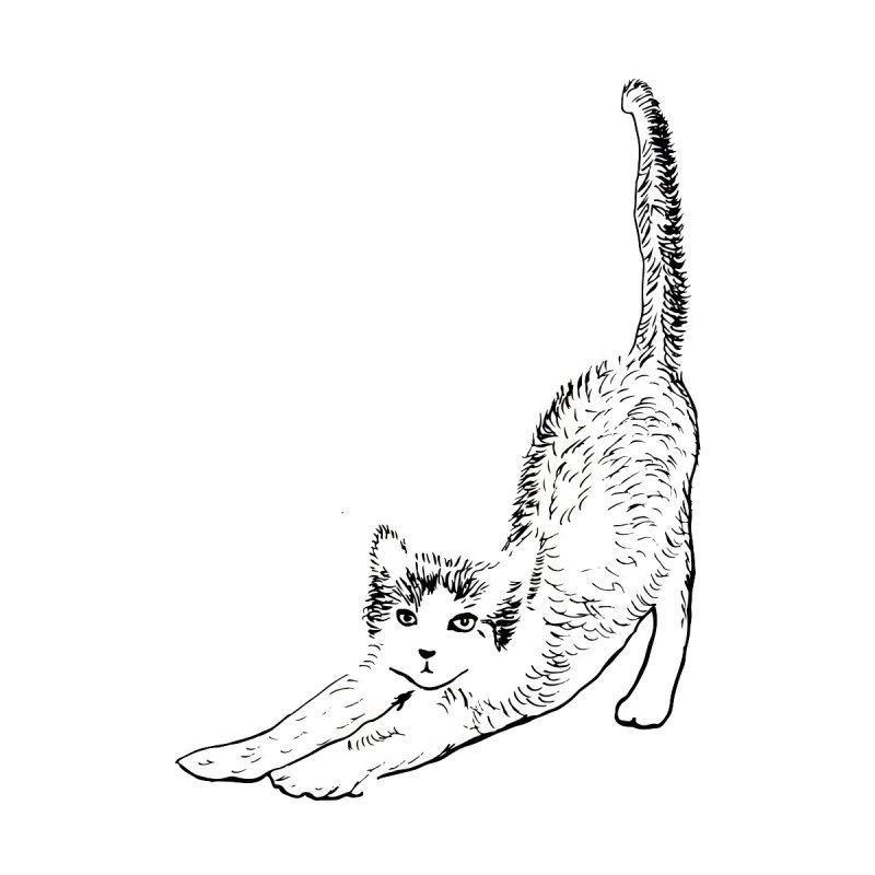 cat stretching by sebastiansrd's Artist Shop