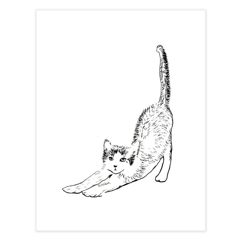 cat stretching Home Fine Art Print by sebastiansrd's Artist Shop