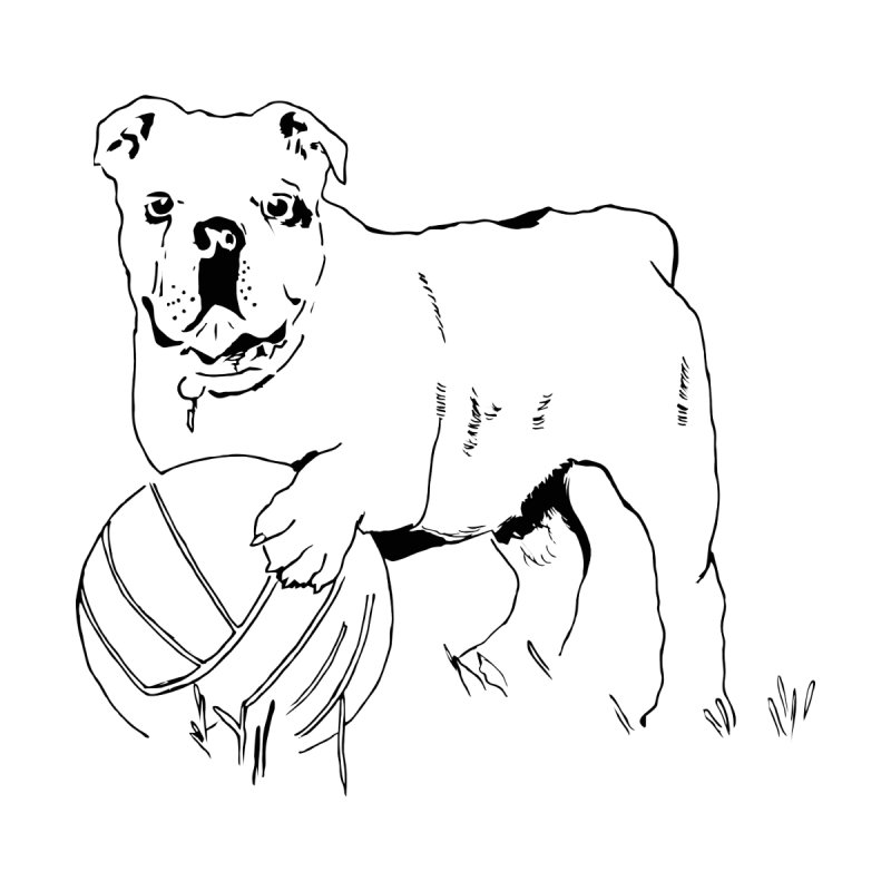 dog with ball by sebastiansrd's Artist Shop