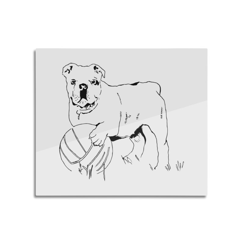 dog with ball Home Mounted Acrylic Print by sebastiansrd's Artist Shop