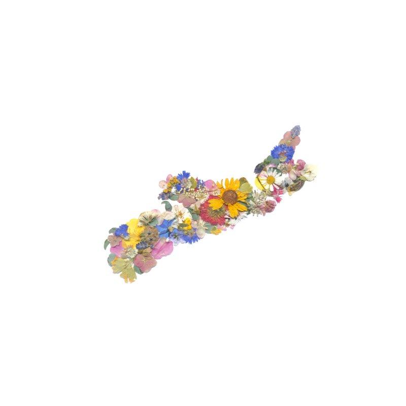 Nova Scotia Pressed Flower Map Women's T-Shirt by Seek & Bloom Creative Co