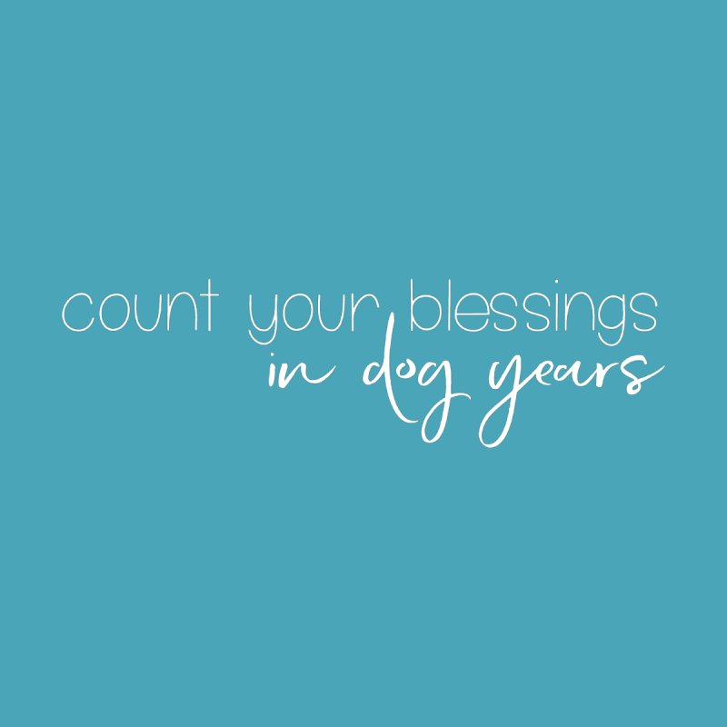 Count Your Blessings by Sioux Falls Area Humane Society Shop