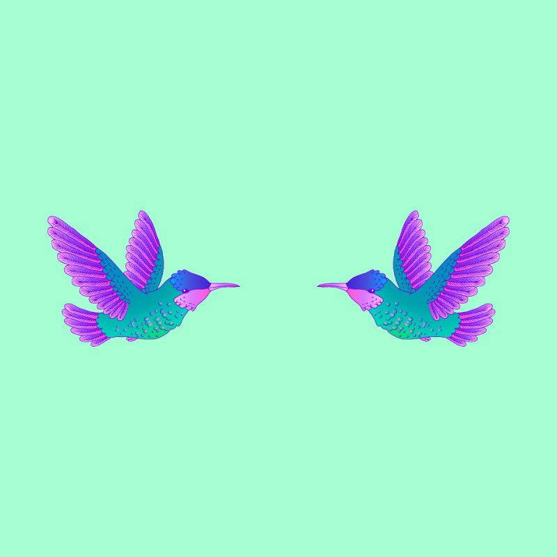 Hummingbirds by ShadoBado Artist Shop